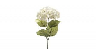 Hydrangea Spray Cream 65Cm