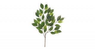 Mini Bay Leaf Spray