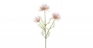 Anemone Seed Spray X3 Pink  65Cm