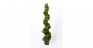 Boxwood Spiral 125 Cm Green In Plastic Pot