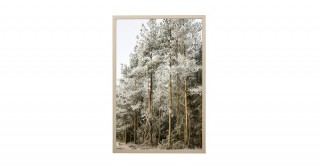 Nature Wall Frame