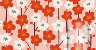 Roll Wrap - Kimono