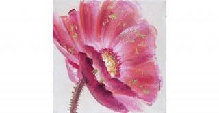 Daisy Handmade Oil Painting 40X40Cm