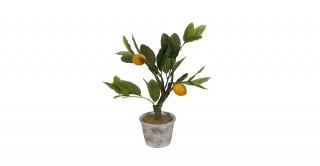 Lemon Mini Tree 45Cm