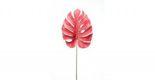 Monstera Leaf Coral 75Cm