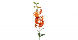 Lily Spray 93Cm Orange