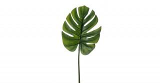 Monstera Leaf 73Cm