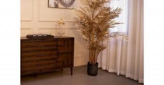 Areca Palm 40Lvs Gold 200 cm