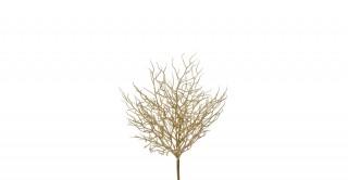 Coral Bush Gold 35 cm