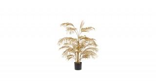 Areca Palm 27Lvs Gold 105 cm