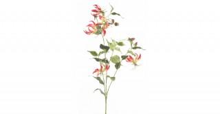 Gloriosa Spray 120 cm Fuchsia