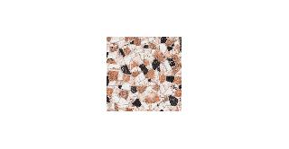 Doria 33 X 33 Outdoor Floor Tile