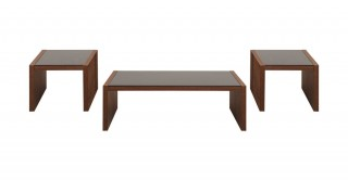 Stacy Coffee Table & 2 End Table